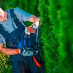 Manutentore del verde: ora l'esercizio dell'attività è vincolato.