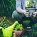 Manutentore del verde: esercizio dell'attività in Lombardia