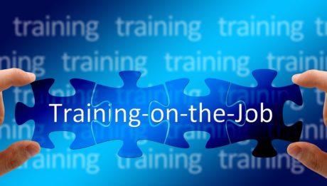 percorsi di apprendimento - training on the job