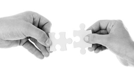 linee guida di dote unica lavoro - puzzle