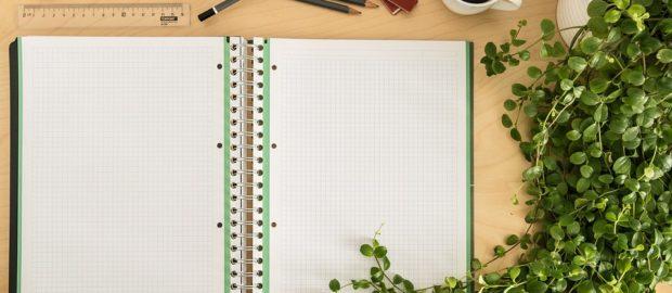 Sistema Duale: imparare lavorando. Immagine di un quaderno aperto su una scrivania con vicino una tazza di caffè, accessori d'ufficio e una pianta.