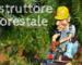 Istruttore forestale