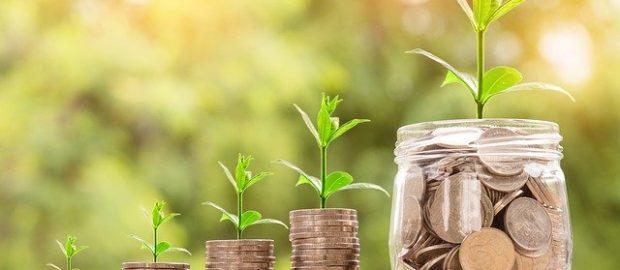 barattolo pieno di soldi in cui cresce una pianta